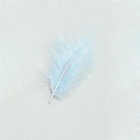 Marabou Turquoise Feathers 12/Pkt (1920S , Burlesque Fancy Dress)