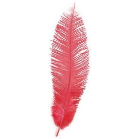 Chick Feathers Red 10/Pkt (1920S , Burlesque Fancy Dress)