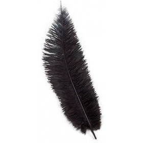 Chick Feathers Black 10/Pkt (1920S , Burlesque Fancy Dress)
