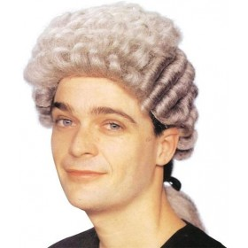 Barrister Wig. Grey (Cops/Robbers Fancy Dress Wigs)