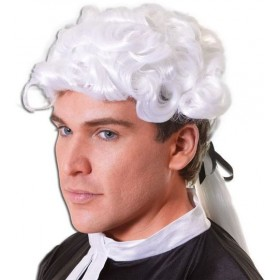 Court Wig. Unisex. Budget (Cops/Robbers Fancy Dress Wigs)