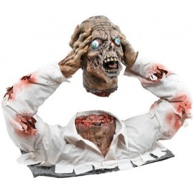 Cut Off Zombie Head Display (Halloween Decorations)
