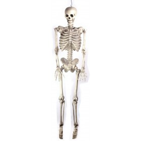 "Skeleton 60"" Hanging- Fancy Dress Halloween"
