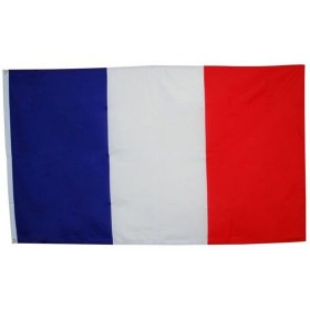 French Flag. 3' X 5'. Cloth (French Fancy Dress Decorations)