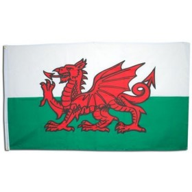 Welsh Flag. 3' X 5' Cloth (Fancy Dress)