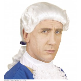 Colonial Man Wig Boxed - Fancy Dress