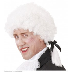Mozart Wig In Box - Fancy Dress
