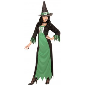 Ladies Black/Green Witch Halloween Fancy Dress Costume