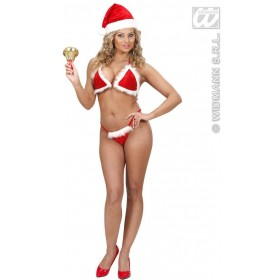 Velvet & Plush Christmas Bikini Fancy Dress Costume (Christmas)