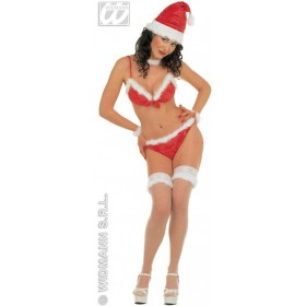 Miss Santa Bikini Velvet Fancy Dress Costume (Christmas)