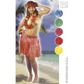Hawaiian Mini Skirt 42Cm 5 Cols - Fancy Dress (Hawaiian)
