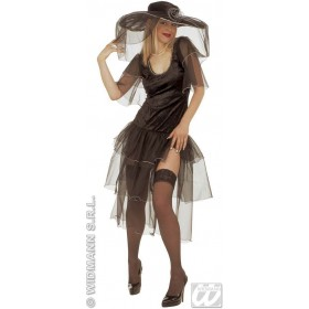 Spicy Widow Adult Fancy Dress Costume Ladies (Halloween)