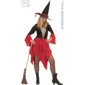 Wicked Witch With Strecht Fabric Dress, Hat Fancy Dress (Halloween)