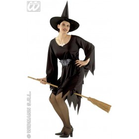 Crudelia Witch Costume Teenage Costume Age 8-10 Girls (Halloween)