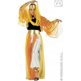 Harem Dancer Gold Ladies Fancy Dress Costume Ladies (Cultures)