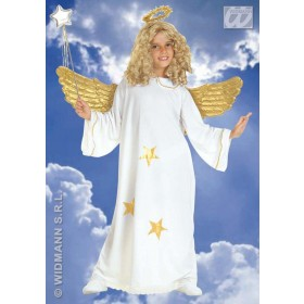 Star Angel With Dress And Halo Fancy Dress Costume (Christmas)