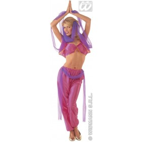 Harem Dancer - Top, Vest, Pants W/Veil, Costume Ladies (Cultures)