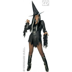 Evil Witch Adult Fancy Dress Costume Ladies (Halloween)