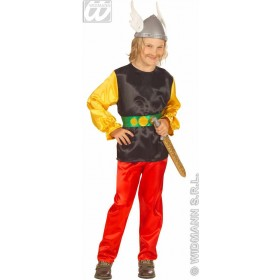 Satin Gaulois Fancy Dress Costume Boys