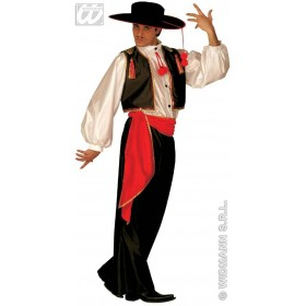 Flamenco Dancer Fancy Dress Costume Ladies (Spanish)