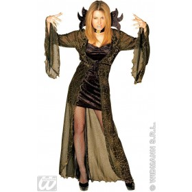 Spiderella Adult Fancy Dress Costume Ladies (Halloween)