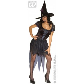 Wicked Witch Adult Fancy Dress Costume Ladies (Halloween)