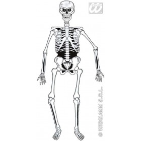 Jointed Skeleton 140Cm - Fancy Dress (Halloween)