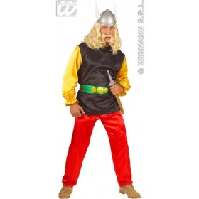 Satin Gaulois - Coat, Pants, Beltstandard Adult Costume