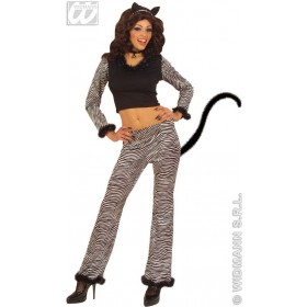 Cat Gold & Silver With Top, Pants, Ears, .. Costume
