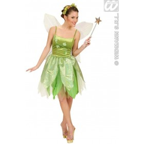 Forest Fairy With Dress, Wings Fancy Dress Costume (Fairy Tales)
