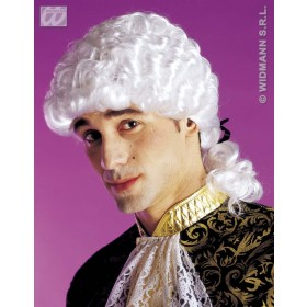 Marquis Wig In Box - Fancy Dress