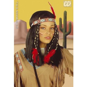 Cheyanne Native American Lady Wig W/Decoration Boxed Fancy Dress (Cowboys/Native Americans)