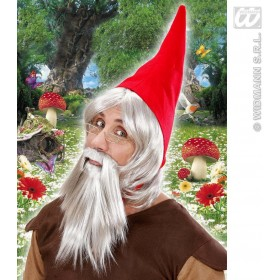 Gnome Hat With Wig & Beard In Box - Fancy Dress