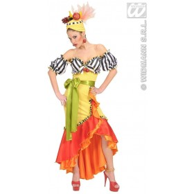 Miranda Fancy Dress Costume Ladies