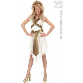 Roman Goddess Fancy Dress Costume Ladies (Greek , Roman)