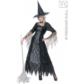 Spiderweb Witch Fancy Dress Costume Ladies (Halloween)