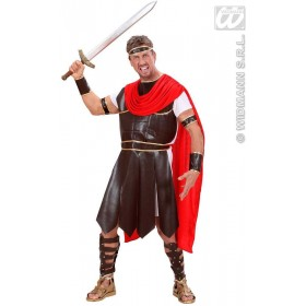 Hercules Fancy Dress Costume Mens (Medieval)