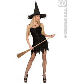 Witch Dress Adult Dreamgirlz Fancy Dress Costume Ladies (Halloween)
