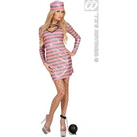 Black/Pink Holographic Fabric Jailbird Fancy Dress