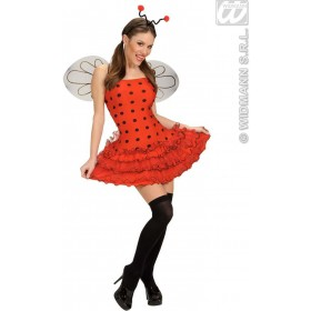 Ladybug With Dress, Wings, Antennas Fancy Dress Costume (Animals)