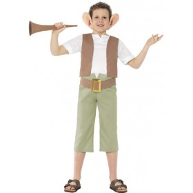Boys Roald Dahl Bfg Fancy Dress Costume