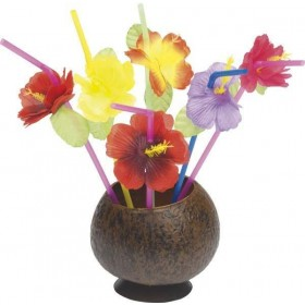Hawaiian Straws Mixed With Flowers Fancy Dress Accessory