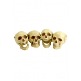 Skull Heads - Fancy Dress (Halloween)