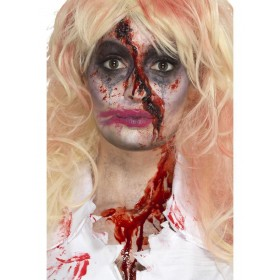 Zombie Nurse Make-Up Kit Fancy Dress Accessory