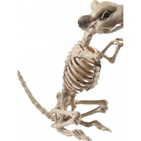 Rat Skeleton Prop Fancy Dress Accessory