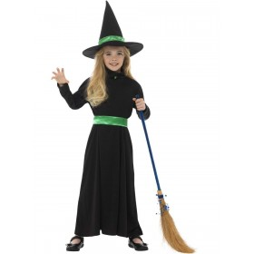 Wicked Witch Costume Fancy Dress