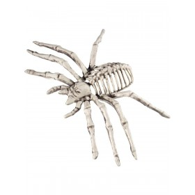 Small Spider Skeleton Prop Fancy Dress Accessory