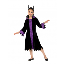 Evil Queen Costume Fancy Dress
