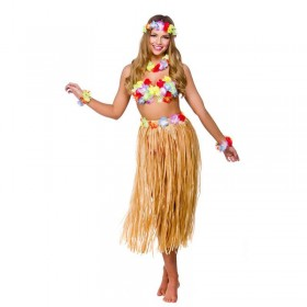 Ladies Hawaiian Hula Party Girl Fancy Dress Costume