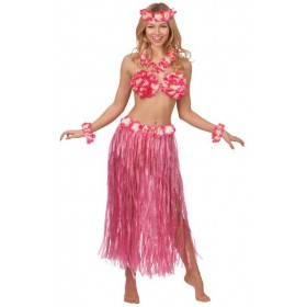 Ladies Hot Pink Hawaiian Honey Set Fancy Dress Costume